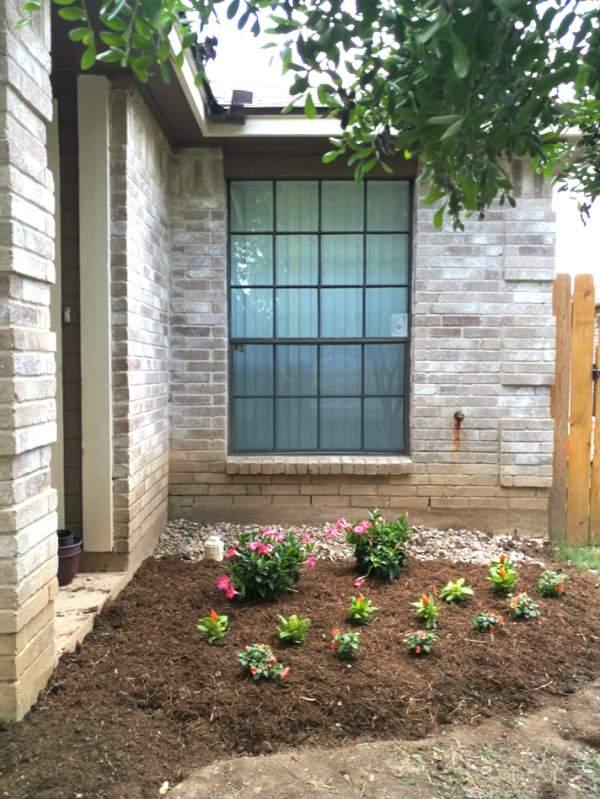 Front flower bed - straight